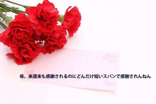 8fc95b122fada25e65b4cfc5b166b881_s.jpg